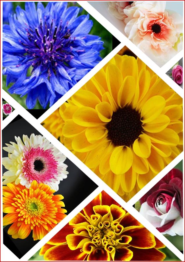 Flower Collage Work.jpg