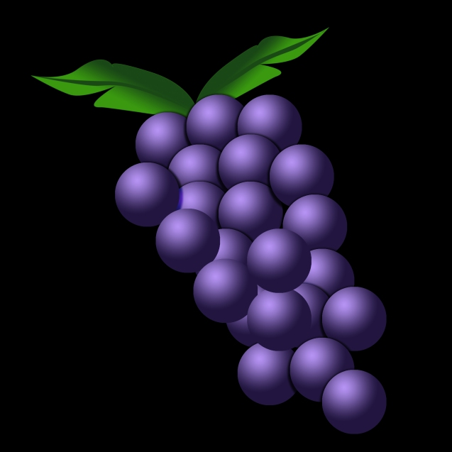 Grapes Illustrations.jpg